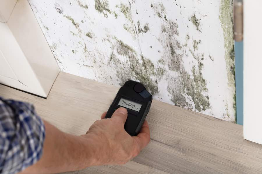 Testing Moisture Levels - Getting ready for mold killing primer