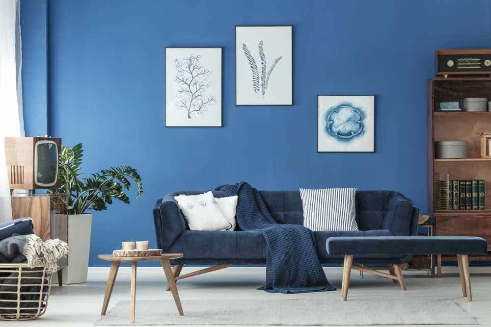 Blue lounge and navy sofa