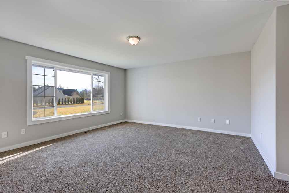 Room with carpet, painted trim and painted walls