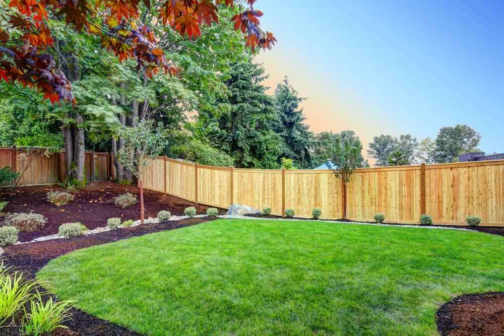 beautiful back yard with a stained fence