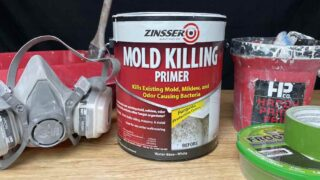 Zinsser Mold Killing Primer and Tools